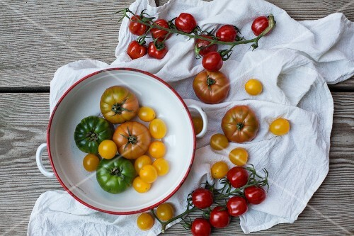 Colourful tomatoes in an enamel bowl and on a white cloth