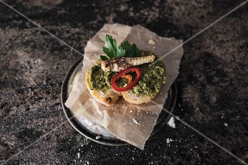 Grilled bread with pesto and grasshoppers