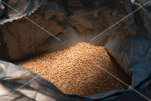 A sack of malt in a brewery