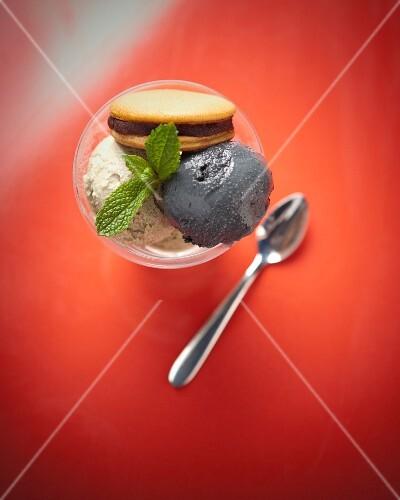 Black sesame seed and matcha ice cream with Dorayaki