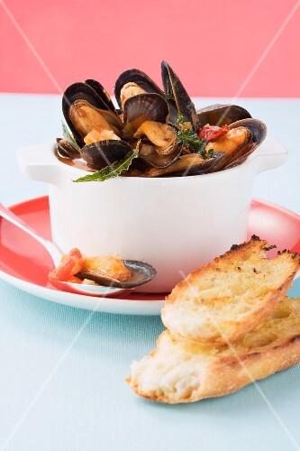 Cozze al pomodoro (mussels in tomato broth, Italy)