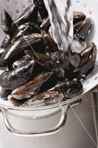Mussels being washed under running water