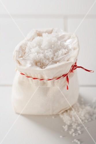 Sea salt in bag