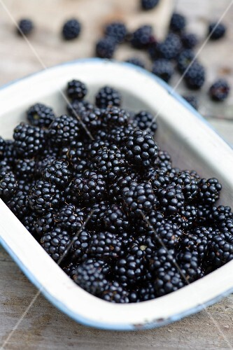 A bowl of fresh blackberries