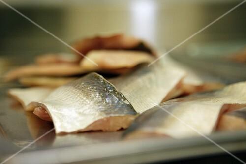 Whitefish fillets
