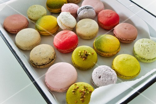 Various macaroons on a baking tray