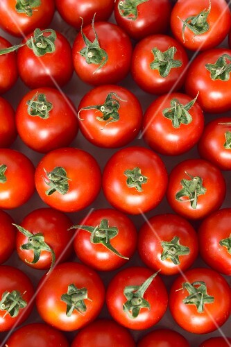 Roma tomatoes (seen from above)