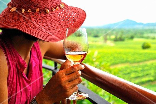 A woman with a glass of rose surveying a vineyard