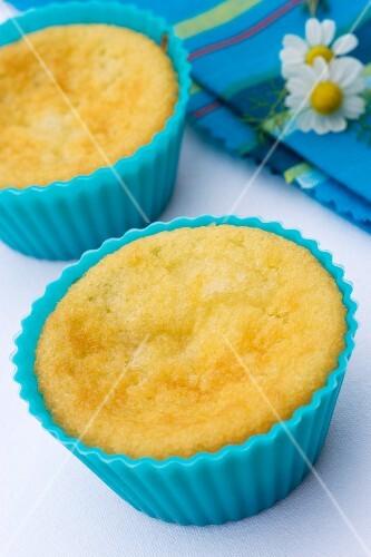 Butter sponge in cake case