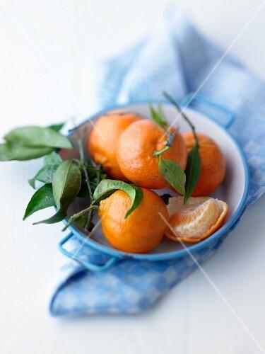 Clementinen mit Blättern in einer Schale