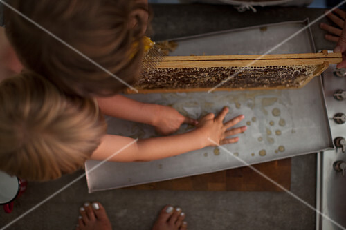Children with a honeycomb