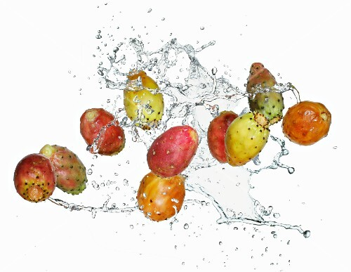 Prickly pears and water