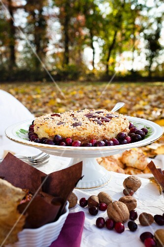 Nut tart with cranberries for autumn picnic