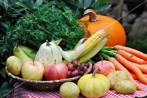 Harvest festival table laid with fruit, vegetables and corn cobs