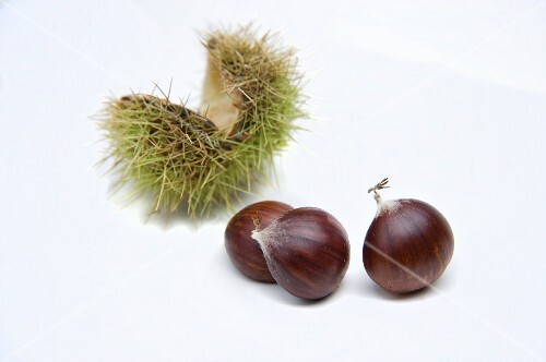 Three chestnuts and open, green chestnut shell