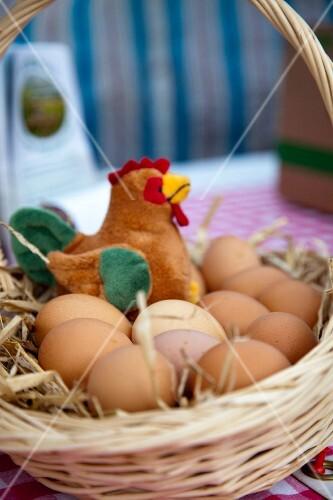 A basket of fresh eggs