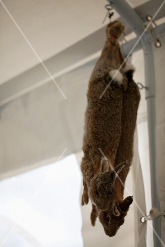 Two hares, hung up