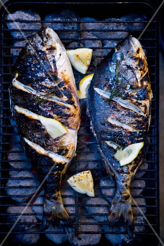 Two bass on a barbecue (seen from above)