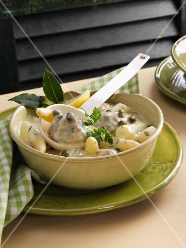 Königsberg-style veal dumplings with white asparagus