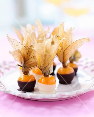 Physalis in chocolate