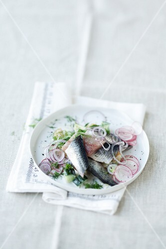 Soused herring on a potato and cucumber salad