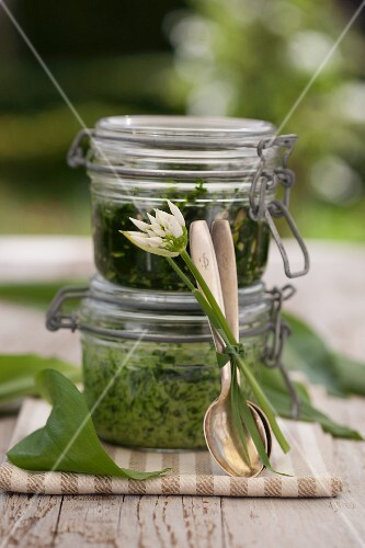 Ramson and stinging nettle pesto with sunflower seeds