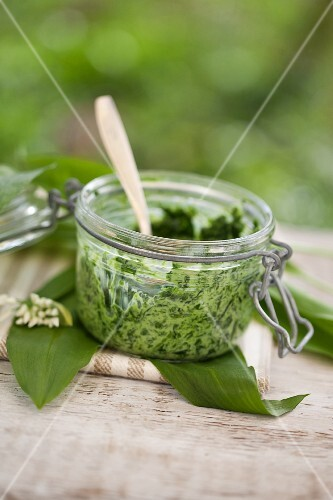 Ramson and stinging nettle pesto with creme fraiche