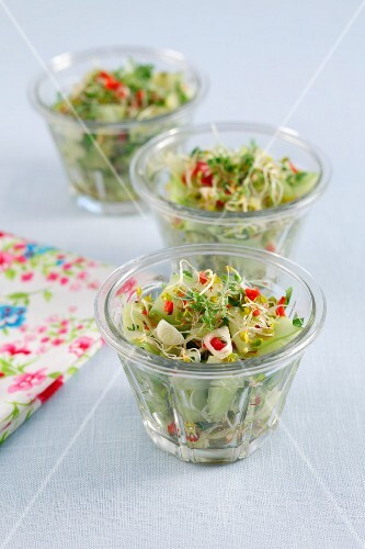 Cucumber salad with bean sprouts, cress, chilli, coriander and soya dressing