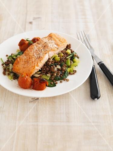 Salmon fillet on a bed of lentils