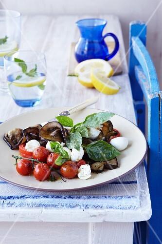 Aubergine salad with glazed cherry tomatoes, mozzarella and basil