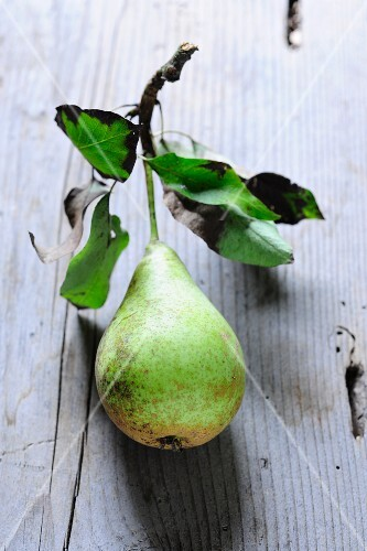 A Hochfeine Butterbirne pear with stem and leaves