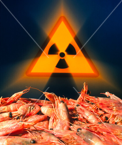 Irradiated prawns with radiation symbol depicted