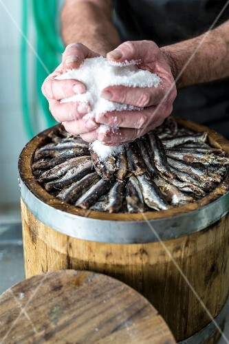 Fish being pickled, Amalfi coast, Italy