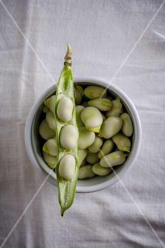 Shelled broad beans