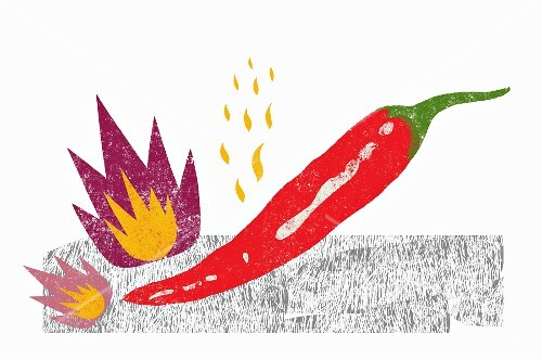 A red chilli pepper (illustration)