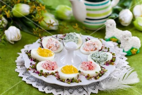 Devilled eggs on a serving platter for Easter