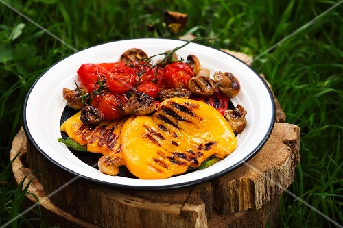 Grilled vegetables on a plate on a tree stump in grass