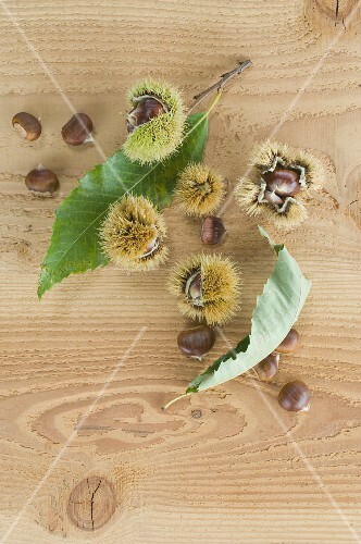 Chestnuts with cases and leaves on a wooden surface