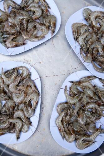 Raw Gung Talee (prawns) on plates