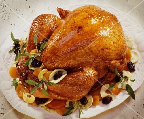 Festive roast turkey with dried fruits and sage