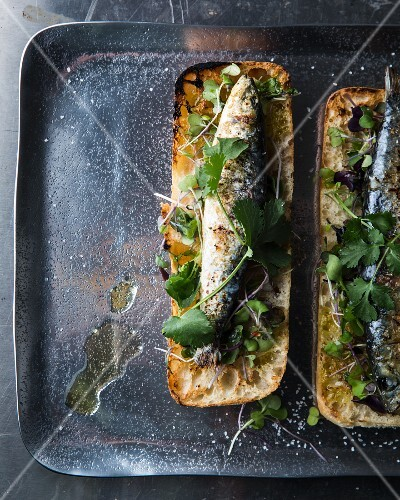 Open ciabatta sandwiches topped with grilled sardines and herbs