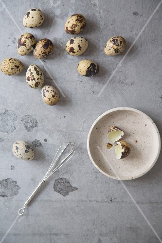 Quail's eggs on a grey surface and egg shells on a ceramic plate