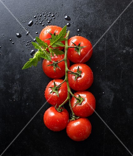 Fresh tomatoes and a leaf on a black baking tray