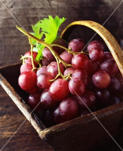 Red grapes in a vintage wooden basket