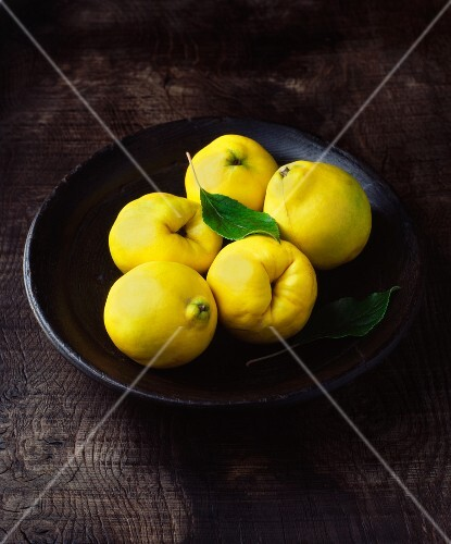 Five quinces with leaves in wooden bowl