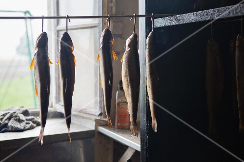 Fish in front of a smoking oven