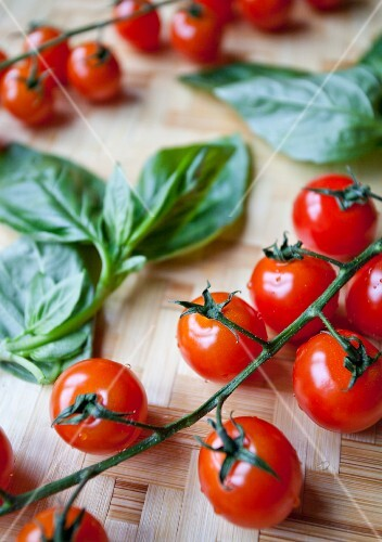 Vine tomatoes and basil