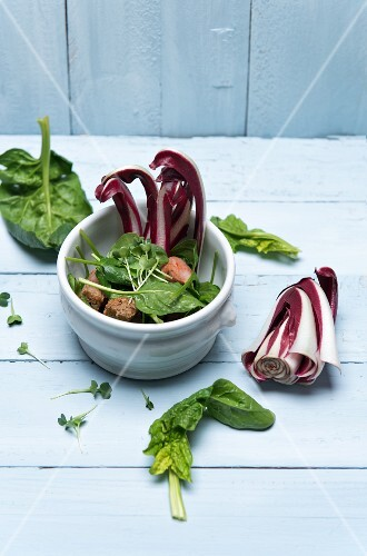 Spinach salad with chorizo, crostini, watercress and trevisio in a porcelain bowl