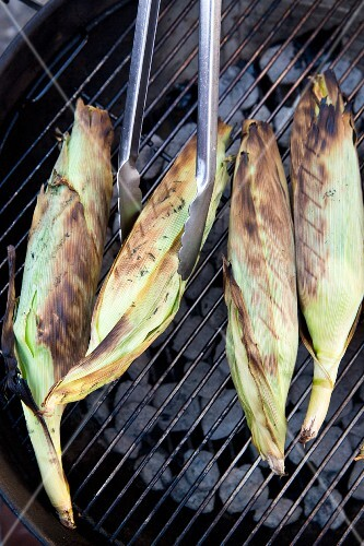 Corn on the cob being grilled in their leaves