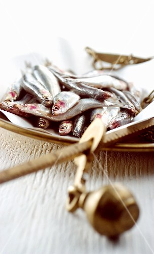Raw anchovies on a pair of scales